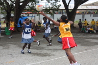 Bougainville defend Western