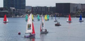 Three fleets of Pacer dinghies were used for the 2010 Victoria Harbour School Sailing Championships