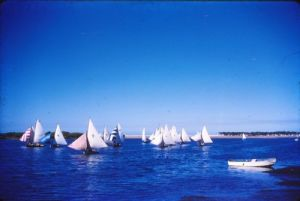 Mixed Fleet, Cotton Tree, circa 1962