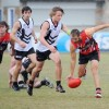 Daniel Johnson was one of Sawtell/Toormina's better players in the preliminary Final win over Port Macquarie. Photo: Leigh Jensen / Coffs Coast Advocate