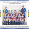2003 U8 Blue