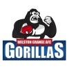 Wilston Grange JAFC