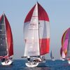 Geelong fleet 2015_Steb Fisher